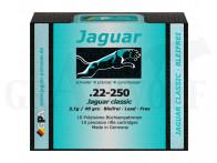 .22-250 48 gr / 3,1 g Jaguar Classic Patronen 10 Stück